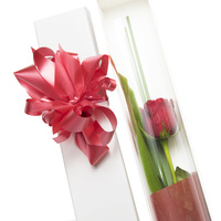 Presentation Rose Box